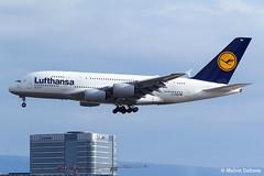 Lufthansa Airbus A380-841  |  D-AIMN  |  Frankfurt Rhein-Main  - EDDF (Melvin Debono) Tags: lufthansa airbus a380841 | daimn frankfurt rheinmain eddf cn 177 melvin debono spotting spotters spotter canon plane planes photography airport airplane aircraft aviation fra deutschland germany