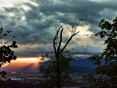 Up a mountain. (thnewblack) Tags: huaweip30pro leicaoptics nature outdoors periscopecamera sunset chilliwackmountain britishcolumbia
