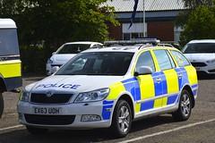 EX63 UOH (S11 AUN) Tags: essex police skoda octavia estate dog section policedogs dogsupportunit dsu response van 999 emergency vehicle ex63uoh