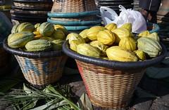 Purposeful pods  .  .  . (ericrstoner) Tags: theobromacacao cacao malvaceae belém veropeso paneiro basket cacaopod cacaojuice pará cacaofruit juice suco veropa