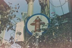 000010 (pingsfoto.2) Tags: film filmcamera filmphotography fujifilm filmlover filmphoto foto filmonly fuji 35mmfilm nikonfg20 kodakfilm expiredfilm motionpicturefilm flower kodak kodakgold200 kodakgold nikon nikoncamera snapshot shotonfilm analog analogue analoguephotograph analogphoto analogphotography landscape taiwan nature camera taipei hana snap sakura pentax photograph photography photographer photo expired tailand pattya trip chill bangkok tainan petphoto catphoto reco