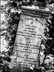 Albert (Darren Wilkin) Tags: grave memorial abneyparkcemetery cemetery monochrome stone
