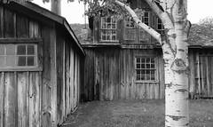 Stoney Creek Sawmill (peterkelly) Tags: digital bw northamerica canon 6d usa us unitedstatesofamerica unitedstates dearborn michigan greenfieldvillage thehenryford wooden wood building tree window libertycraftworks stoneycreeksawmill