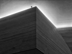 Lobby, The James Museum of Western & Wildlife Art (Eric Seibert) Tags: ericseibert modernarchitecture moderndesign stpetersburgflorida blackandwhitephotography iphonephotography ilovetheburg