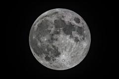 Moon_2019.06.17 (ko1fun) Tags: tsa120 d850 mach1