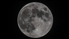 Moon_mov_2019.06.17 (ko1fun) Tags: tsa120 d850 mach1