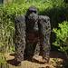 • Full metal Gorilla
