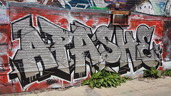 Silver Chrome Graffiti (Coastal Elite) Tags: graffiti alley montreal ruelle silver paint alleyway plateaumontroyal plateau saintcuthbert bagg alleyways alleys wall urban street art streetart argent chrome metallic letters walls apashe spray spraypaint montréal canada