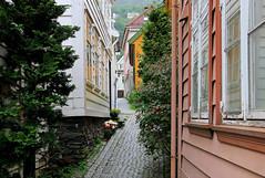 Badstustredet in the quarter of Marken (Odd Roar Aalborg) Tags: cobblestone alley badstustredet marken bergen wooden house densely urban tree garden window