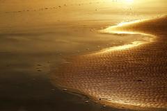 Limite dorado (chelocatala) Tags: arena dorada andas reflejo playa cullera valencia españa
