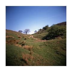 (darrenriley) Tags: holga120gn fujiprovia100 lancashire whitewell landscape e6