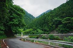 K-1 20190608-0006 (Rakurai70) Tags: 飯能市 埼玉県 日本