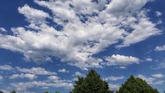 Laister atsaldeko 5 tak eta 33 gradu Zumarragan (eitb.eus) Tags: eitbcom 35848 g1 tiemponaturaleza tiempon2019 primavera gipuzkoa zumarraga aitoragirrezabal