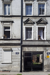 Friends (youdoph) Tags: dog house street architecture city urban