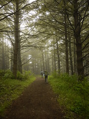 Mt Wittenberg Trail (Franklyn W) Tags: pointreyes nationalseashore backpacking skytrail skycamp coasttrail mtwittenbergtrail twitter