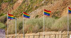 2019.06.13 Hilton Beach at Tel Aviv Pride, Tel Aviv Israel 1640038