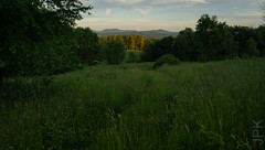 Will never tire of this view. (koperajoe) Tags: view vista hillcountry landscape westernmassachusetts newengland