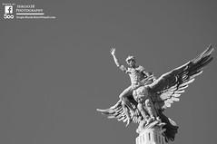 Volando (Sergio2R Photography) Tags: volando flying valencia españa spain estaciónnorte fénix blancoynegro blackwhite