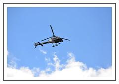 Helico (Christ.Forest) Tags: helico vol ciel pilote helicoptere hélicoptère armada 2019 rouen nikon d610 150600 normandi normandy 76 laseine laseinemaritime moteur palme rotor