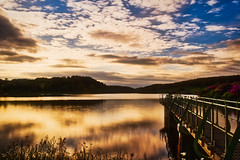 Kinnock Reservoir (locodigital) Tags: water dartmoor picoftheday devon devonlife lovedevon