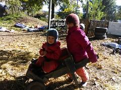 IMG_20181016_102755 (Ithaca Children's Garden) Tags: playful nature preschool wagon push