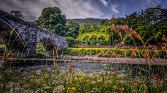 Riverside cottage (Einir Wyn Leigh) Tags: cottage summer colour flowers river green countryside nature natural beauty bridge history landscape outside sunshine foliage wales uk sky rural