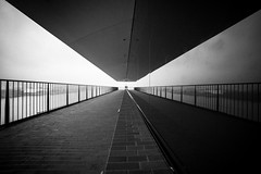 the girl who was not there / in the house of gemini (Özgür Gürgey) Tags: 14mm 2019 bw d750 elbphilharmonie hafencity hamburg nikon samyang architecture grainy lines people reflection vignette wideangle