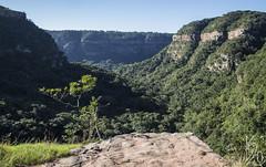 Krantzkloof Nature Neserve (katka.havlikova) Tags: nature krantzkloof travel africa afrika southafrica cestování příroda hills rocks mountains valley