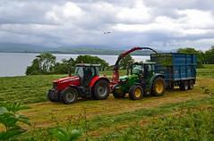 (Zak355) Tags: rothesay isleofbute bute scotland scottish silage farm farming tractors masseyferguson johndeere tractor