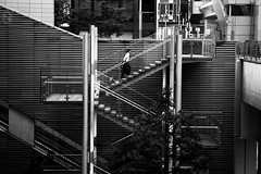 (cherco) Tags: japan solitario solitary silhouette silueta shadow sombra street solo alone architecture arquitectura city composition canon composicion tokyo up blackandwhite blancoynegro monochrome man lonely light urban