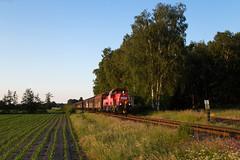 Boostedt (Nils Wieske) Tags: schleswigholstein akn gravita baureihe 261 vossloh db cargo güterzug train railway railroad eisenbahn bahn