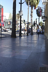 day 17. Hollywood blvd and museum 68 (Dave S Campbell) Tags: hollywood california car blvd boulevard ruby slippers wizard oz v movie burt reynolds theatre chinese sign lambrghini props masks delorean batman