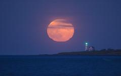 (amy20079) Tags: newengland maine lighthouse woodislandlighthouse moon fullmoon ocean sea seascape island water orange bluehour moonrise strawberrymoon glow biddeford saco orangered