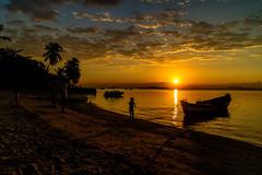 Sunset em Paquetá - Rio de Janeiro (mariohowat) Tags: ilhadepaquetá paquetá sunset sun pôrdosol silhuetas contraluz riodejaneiro natureza canonm3
