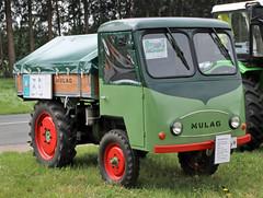 Mulag farm truck (Schwanzus_Longus) Tags: old tractor classic truck vintage germany lorry german vehicle bruchhausen vilsen farm farming mulag md22
