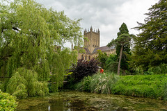 Wells Cathedral (Bob C Images) Tags: england cathedral wells somerset landscape architecture water trees