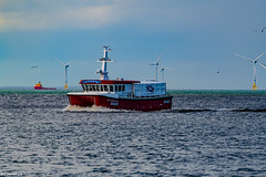 Boy Gordon VI (Crew Transfer Vesel) Arriving Aberdeen Harbour 18/06/2019