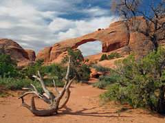 Campground Arch (Steve Corey) Tags: arches nationalpark utah sandstone wind rainandfire deadtree sky stevecorey holeinthewall