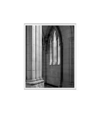 Cathedral, Washington (Silver gelatin print) (GrayStray) Tags: technikaiii sk210mm trix nationalcathedral washingtondc