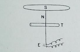 This image is taken from Page 31 of The Croonian lectures on the chemical side of nervous activity : delivered before the Royal College of Physicians of London, in June, 1901