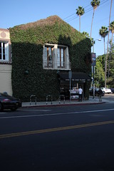 Daily Planet (Dan Rawe Photography) Tags: dailyplantet heartwormpress hollywood