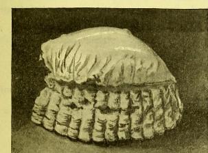 This image is taken from Page 129 of La grande cuisine illustrée : sélection raisonnée de 1500 recettes de cuisine transcendante