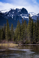 Canmore, Canada (ellieupson) Tags: canmore river mountain trees snow sky blue alberta canada banff nationalpark landscape nature