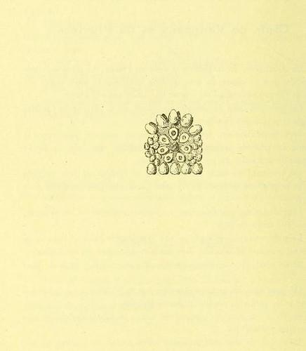 This image is taken from Page 166 of La grande cuisine illustrée : sélection raisonnée de 1500 recettes de cuisine transcendante
