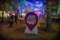 Where In The Woods Signage, 2019.06.13 (Aaron Glenn Campbell) Tags: bonnaroo musicfestival coffeecounty manchester tn tennessee whereinthewoods evening night atmospheric mood color food vendors lights outdoors optoutside nikcollection colorefexpro sony a6000 ilce6000 mirrorless sigma 19mmf28exdn primelens wideangle emount