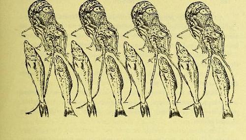 This image is taken from Page 167 of La grande cuisine illustrée : sélection raisonnée de 1500 recettes de cuisine transcendante