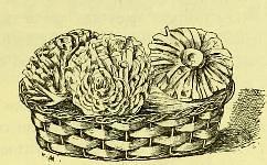 This image is taken from Page 91 of La grande cuisine illustrée : sélection raisonnée de 1500 recettes de cuisine transcendante