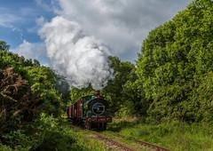 Tanfield Railway 16-6-2019 (KS Railway Gallery) Tags: tanfield railway legends industry gala uk steam bowes bridge
