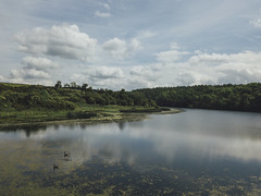 Oulston Reservoir (Matthew-King) Tags: oulston reservoir drone north yorkshire dji