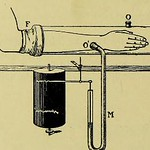 This image is taken from Page 66 of Therapeutics of the circulation : eight lectures delivered in the spring of 1905 in the physiological laboratory of the University of London thumbnail